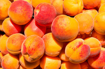 Many tasty and fresh apricots with red sides, top view. Health c