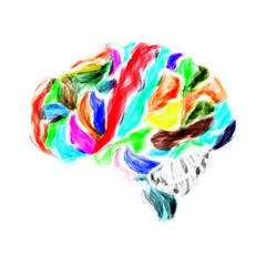 human brain painted with watercolors
