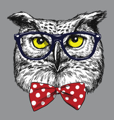 Hipster Owl with glasses and bow tie. Glasses and tie are separated.