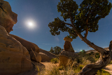 Devils Garden Escalante at Night