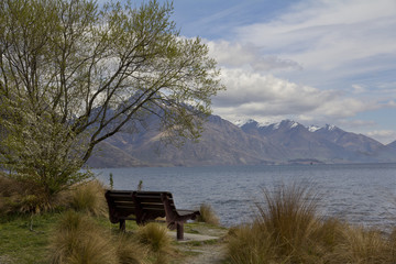 View of Lake Wakatipu from the Queenstown Gardens with a Park Bench in Spring Time