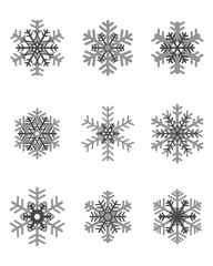 Set of different gray snowflakes, vector illustration