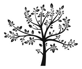 Tree black silhouette