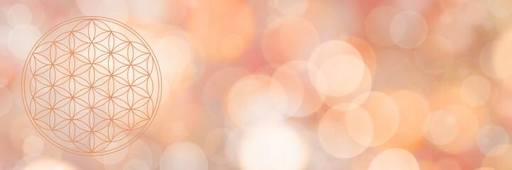 blume des lebens - warmes wundervolles licht - banner