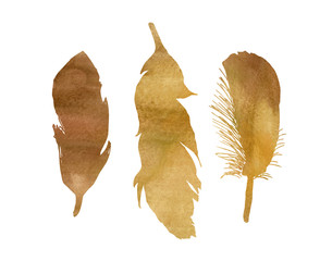 A set of three watercolor yellow, brow, gold, bird feathers