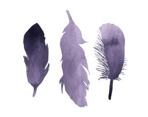 A set of purple lavender watercolor bird feathers