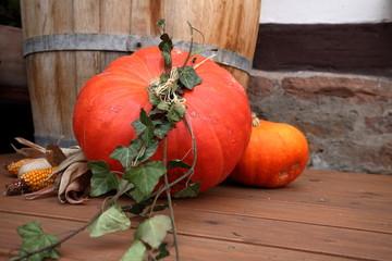 Herbstliche Dekoration mit Kürbis für Halloween