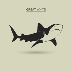 Vector Great white shark
