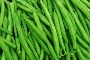 green bean background