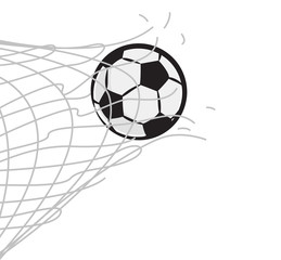 soccer ball through the net