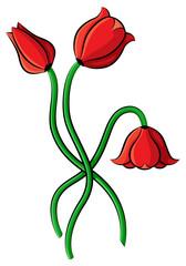 Cartoon tulips flowers