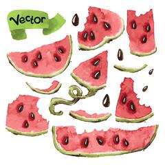 Watermelon Slices Set