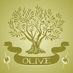Olive tree with label and olive sticks