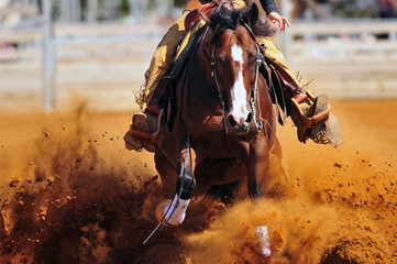A close up view of a rider sliding the horse in the dirt Wall mural