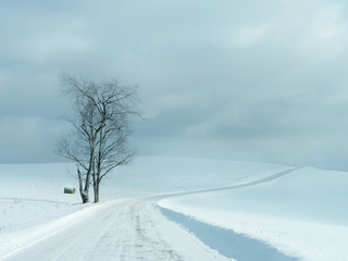 Minimalistic beautiful snow scene with road