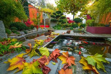 Privatgarten im Herbst