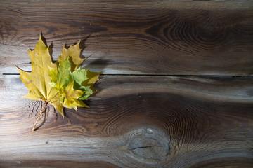 Fototapeta Jesienne liście na drewnianym tle obraz