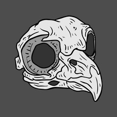 Isolated black and white vector Bird skull