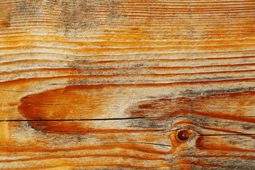 wood texture close up, warm colors