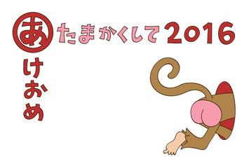 あたまかくして(年賀状2016)
