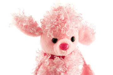 Fluffy pink poodle toy isolated on white