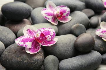 Fond de hotte en verre imprimé Bestsellers Spa stones and orchids closeup