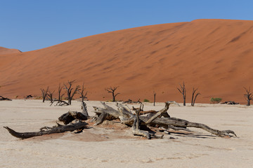 beautiful sunrise landscape of hidden Dead Vlei