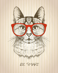 Vintage graphic poster with hipster cat with red glasses.