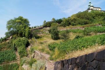 Radebeul: Weg zum Spitzhaus am Weinhang
