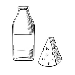 Bottle of milk and piece of cheese sketches