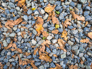 Fall leaves and stones