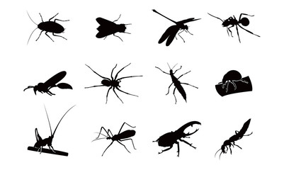 Kinds of Insect Silhouette Complete Set