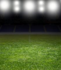 stadium under the bright focuses