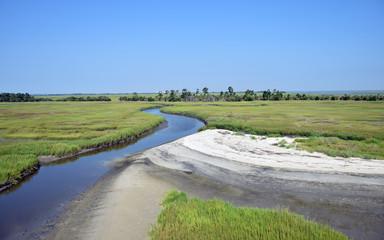 Marsh near Hilton Head