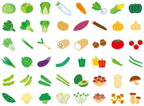 シンプル野菜セット