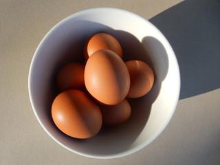 braune Eier in einer Schüssel