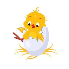 Cartoon Chicken in an Egg. Vector Illustration
