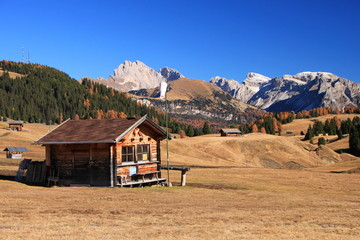 Autunno all'Alpe di Siusi, Alto Adige tra larici, prati d'alta quota, malghe e Torggelen