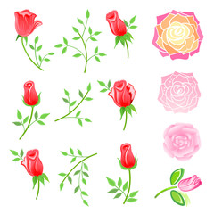 Roses & twig with leaves set
