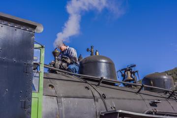Engineer Polishing the Train Whistle
