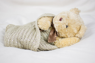 Newborn Photo Teddy Bear professional look for marketing purposes