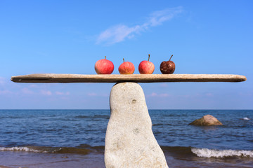 Four apples on seashore