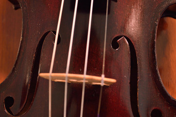 Antique violin closeup against wood
