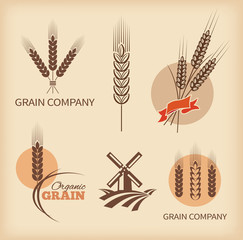 Wheat symbols and labels. Vector design elements set 2.