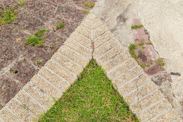 texture of brick paving walkway