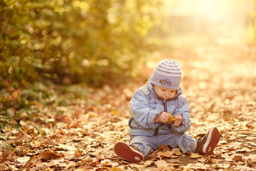 Happy baby boy in the autumn forest