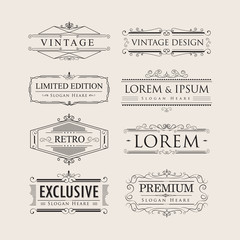 Set vintage luxury calligraphy flourishes elegant logos badges v