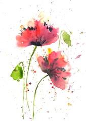 Red poppy flower in modern art watercolor painting