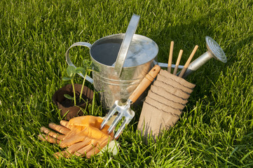 Lake seedlings, GLOVES, peat pots and garden rakes on the lawn G