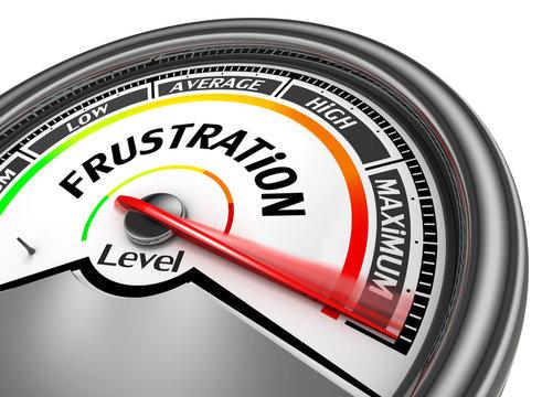 Frustration level to maximum conceptual meter